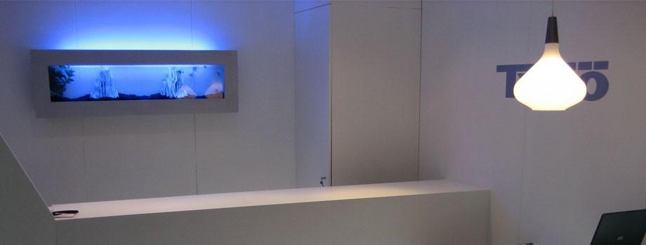 Acquari su misura acquari a parete acquari design for Arredo acquario acqua dolce
